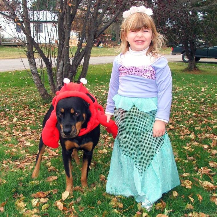 Ariel and Sebastian Kids Costume