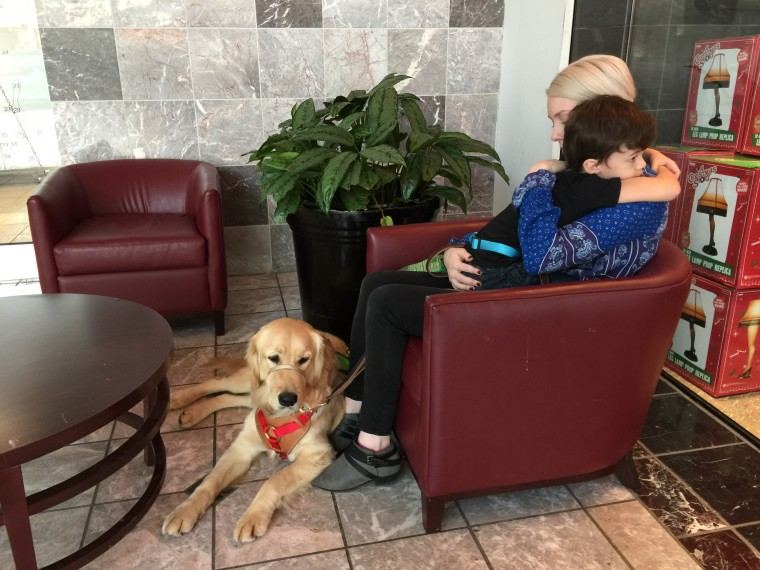 It took two years for the Niehaus family to be placed with Tornado by 4 Paws For Ability, an organization that trains service dogs for children with disabilities.