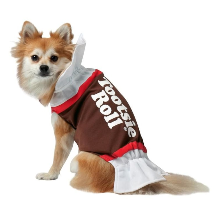 Tootsie Roll Dog Costume  sc 1 st  Today Show & Cutest Halloween dog costumes inspired by food