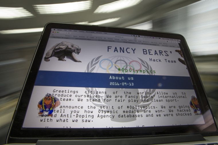 Image: The Fancy Bears website fancybear.net seen on a computer screen