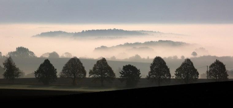 Image: Autumnal Morning Fog