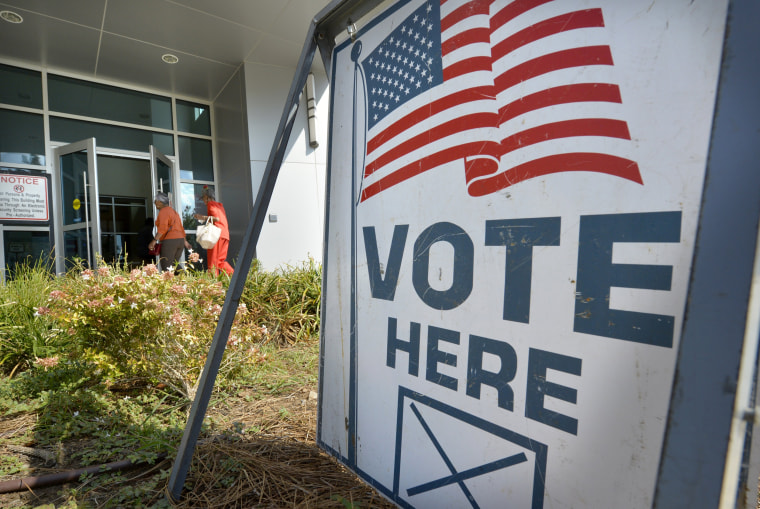 Image: Early voting