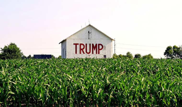 A farmer's barn in Somerset in rural central Ohio features a show of support for president-elect Donald Trump.