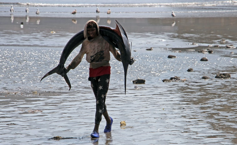 Image: TOPSHOT-YEMEN-LIFESTYLE-FISHING