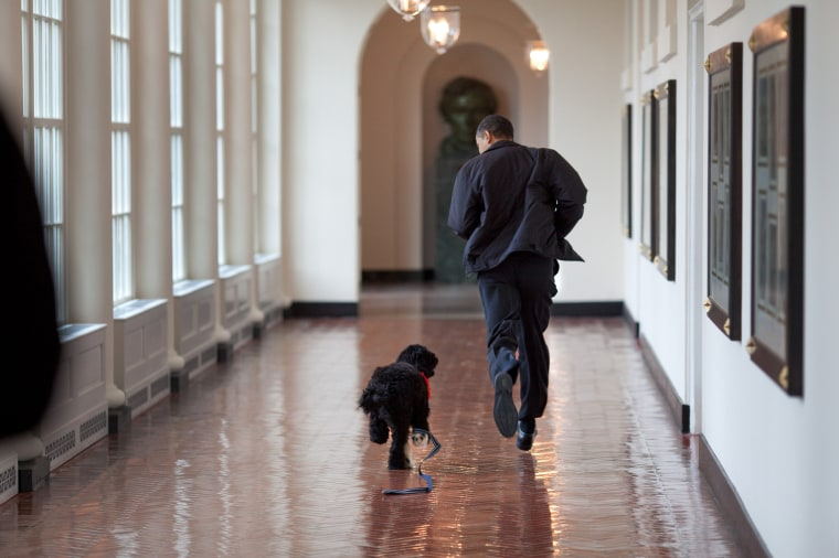 President Barack Obama runs down the East Colonnade with family dog, Bo, March 15, 2009.