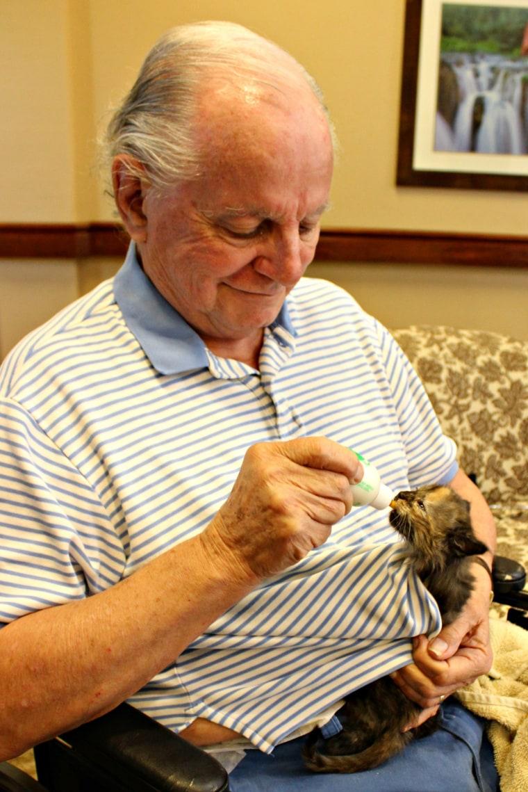 Alzheimer's patients nursing tiny kittens
