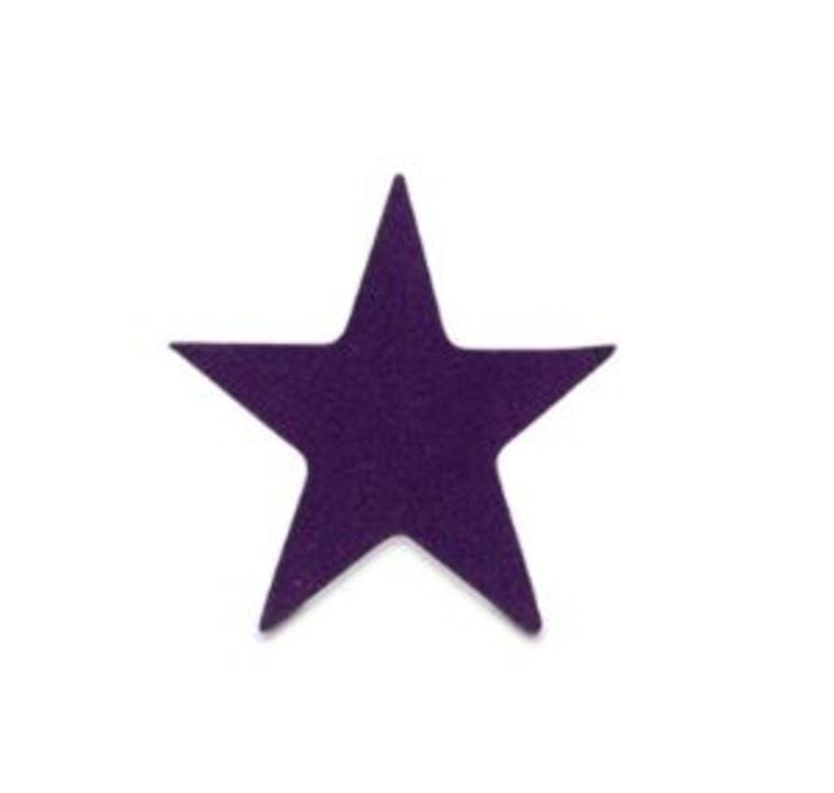 Velvet star sticker