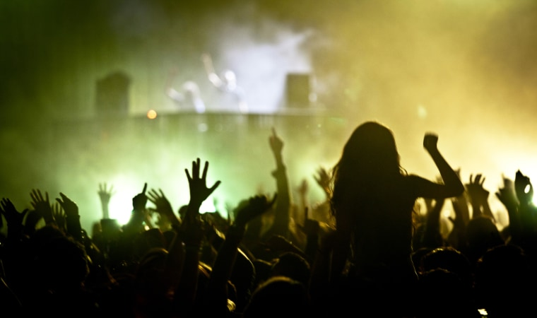Image: Crowd dancing at a music festival