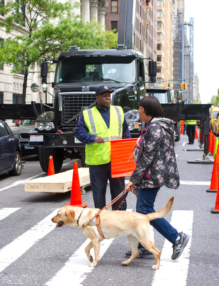 A guide dog team crossing the street in NYC. There is construction behind the team, but the yellow labrador retriever remains calm and focused.
