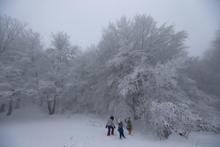 Image: Snow in Georgia