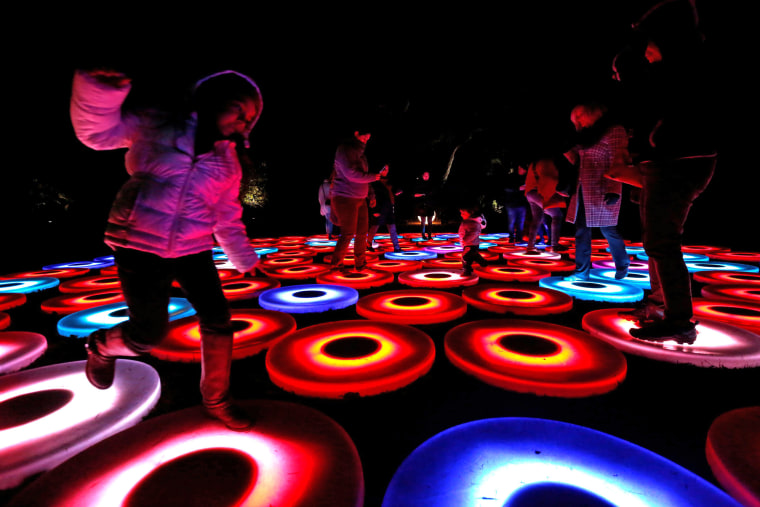"""Image: People interact with \""""Luminous Lawn\"""" which is part of the exhibit \""""Enchanted: Forest of Light\"""" at Descanso Gardens in La Canada Flintridge"""