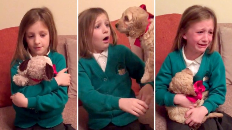 parents brought their daughter's stuffed animal to life for Christmas