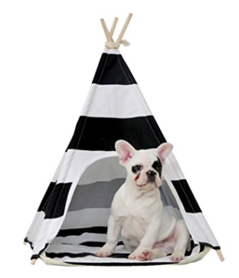 Teepee dog house