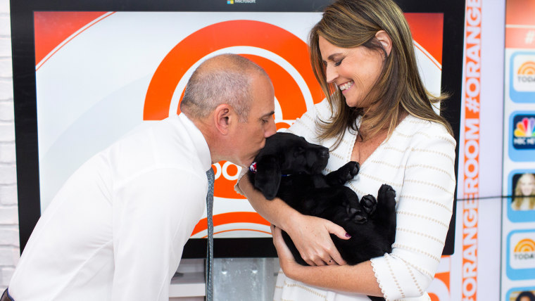Matt Lauer and Savannah Guthrie with Charlie