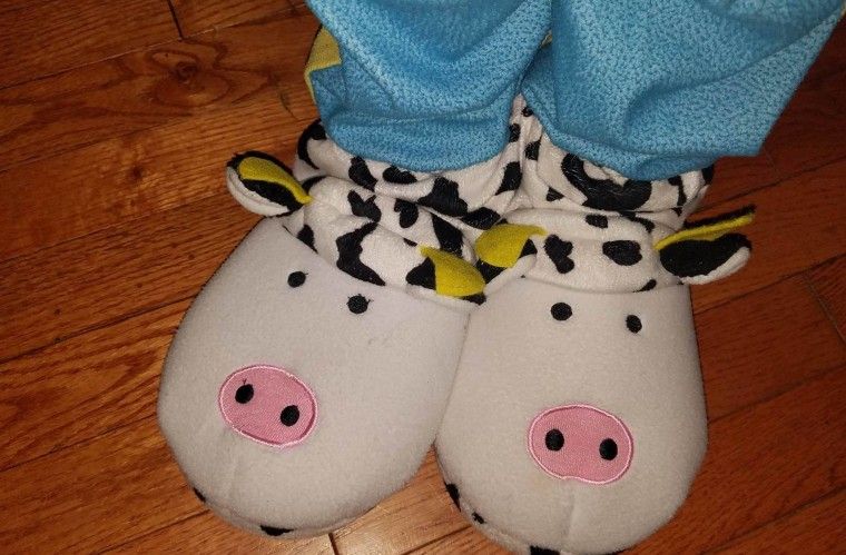 In addition to stuffed cows, Ryan has received cow slippers, blankets, t-shirts and socks.