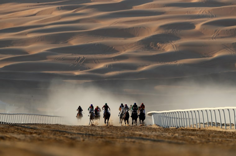Image: Horses and jockeys in action during the Liwa Sports Festival a