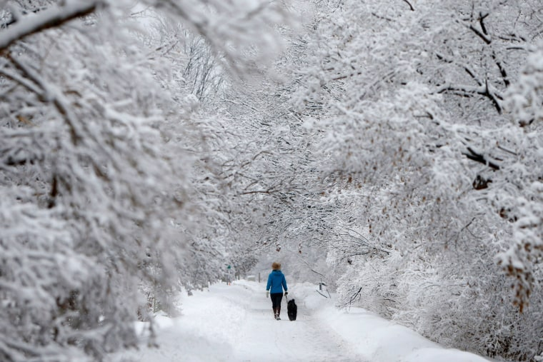 Image: A woman walks a dog on a snow-covered path beside the Rideau Canal in Ottawa, Ontario, Canada on Jan. 4.