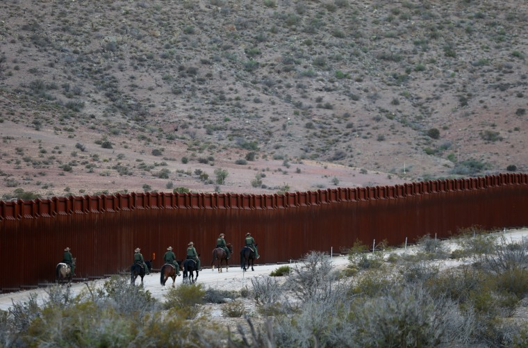 Image: The Wider Image: Wild horse border patrol