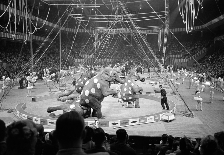 Image: Elephants and dancers go through their paces in the opening stages of the first night of the Ringling Brothers and Barnum and Bailey Circus at Madison Square Garden in New York on March 29, 1961.