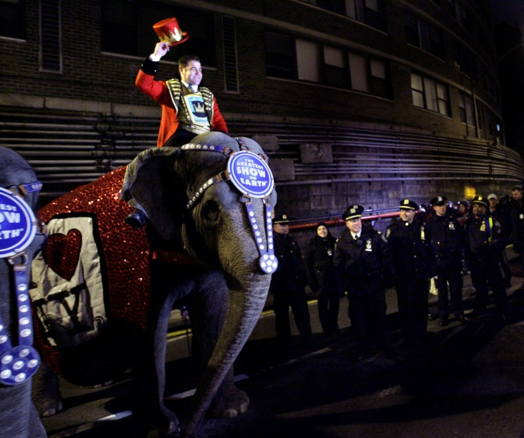 Elephants pose for a picture after exiting the Queens Midtown tunnel while police officers look on in New York, March 18, 2008.  The annual parade of elephants announces the arrival of the circus.