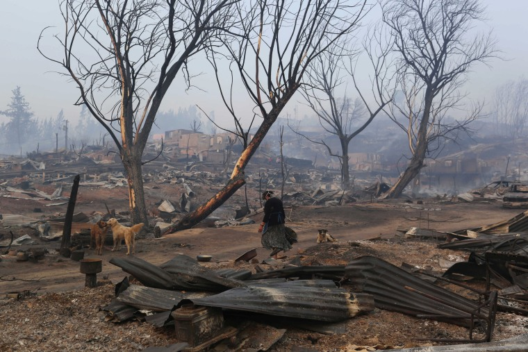 Image: A woman walks near burnt houses as the worst wildfires in Chile's modern history ravage wide swaths of the country's central-south regions, in Santa Olga
