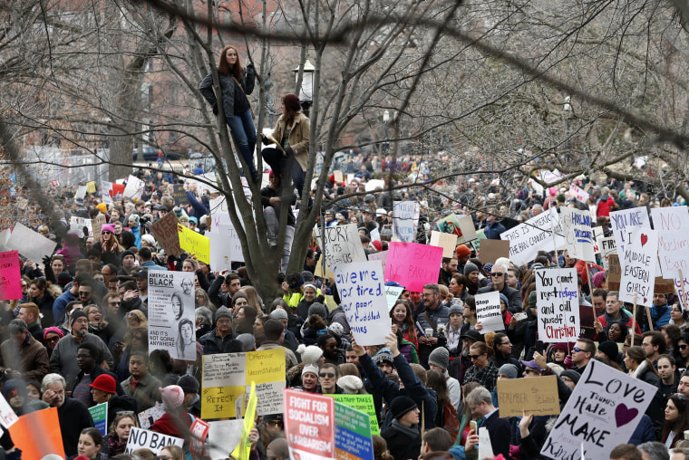 Image: People sit in a tree above protesters carrying signs and chanting in Lafayette Park near the White House during a demonstration