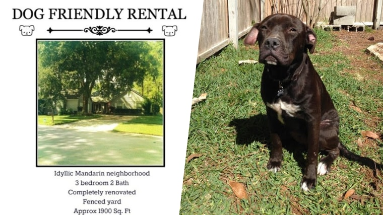 Landlord only rents to tenants with big dogs, especially pit bulls