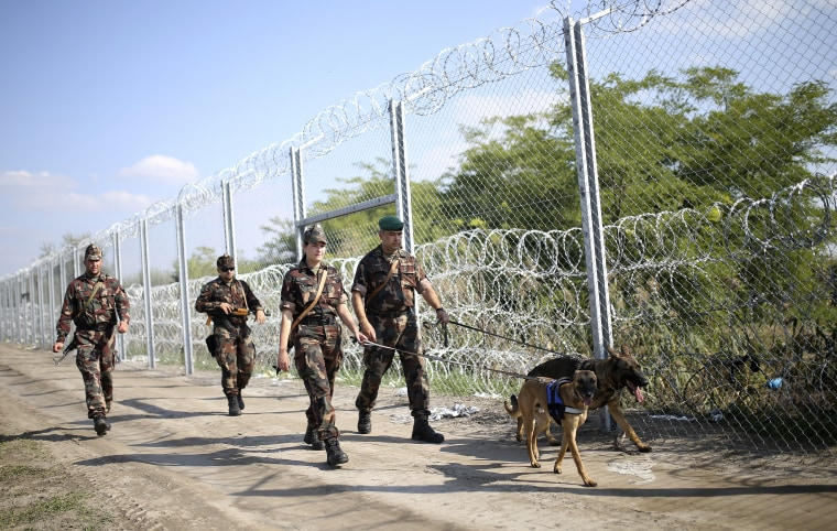 Image: Hungarian soldiers walk along a fence on the border with Serbia