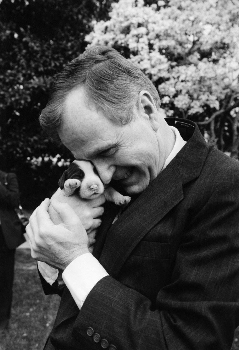 Image: President George H.W. Bush  holds one of first dog Millie's six puppies for the press