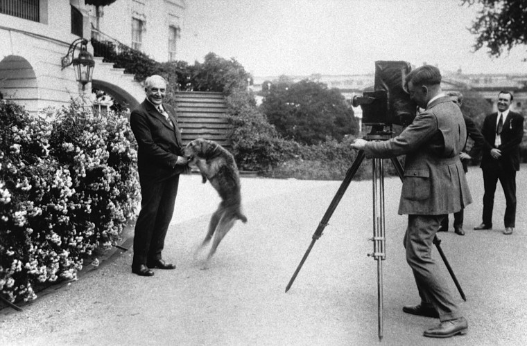 Image: Photographer and President Warren G. Harding