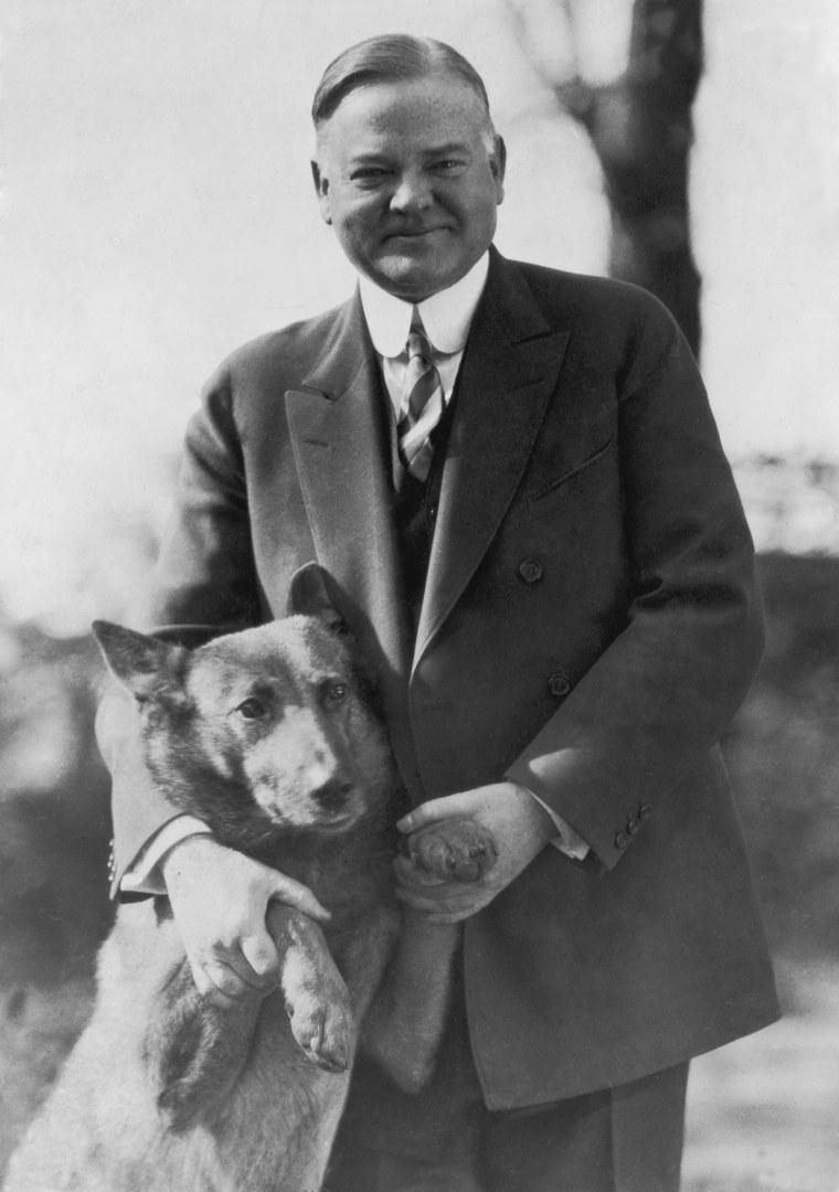 Image: Herbert Hoover