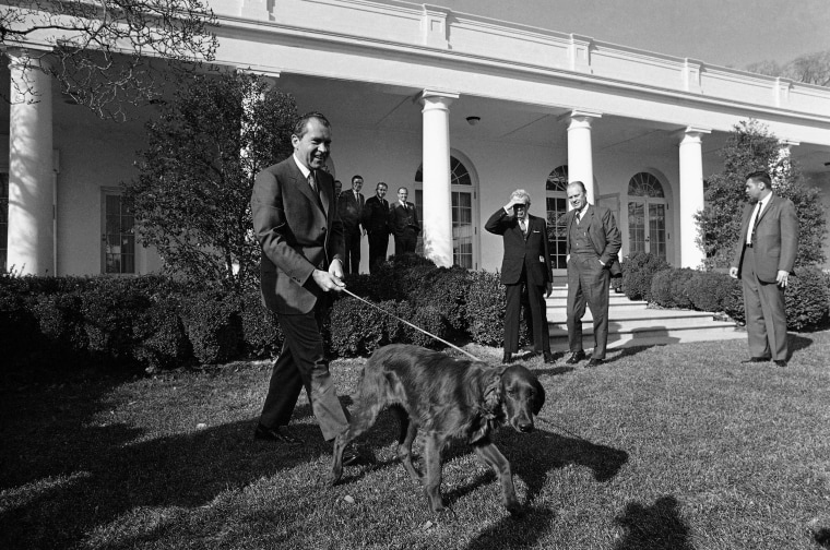 Image: President Richard Nixon showed off Tim, his new six-month-old Irish Setter.