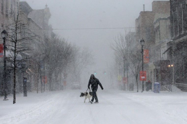 Image: A man walks his dog in heavy falling snow on Main Street in the village of Nyack, New York, a suburb north of New York City, Feb. 9, 2017.