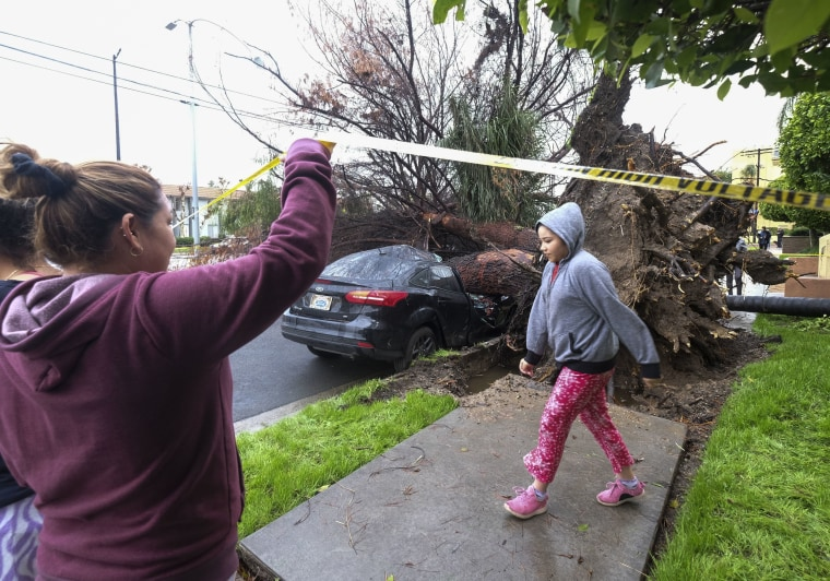 Image: Neighbors walk by a fallen tree that crushed a car