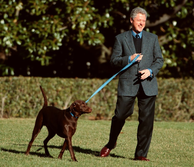 Image: Bill Clinton and his dog Buddy