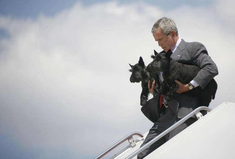 Image: US President George W. Bush walks off Ai carrying the family pets