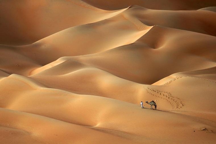 Image: TOPSHOT-UAE-DESERT-NATURE