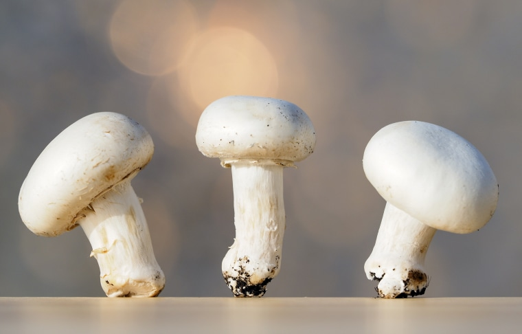 Small group of mushrooms on an wood table top