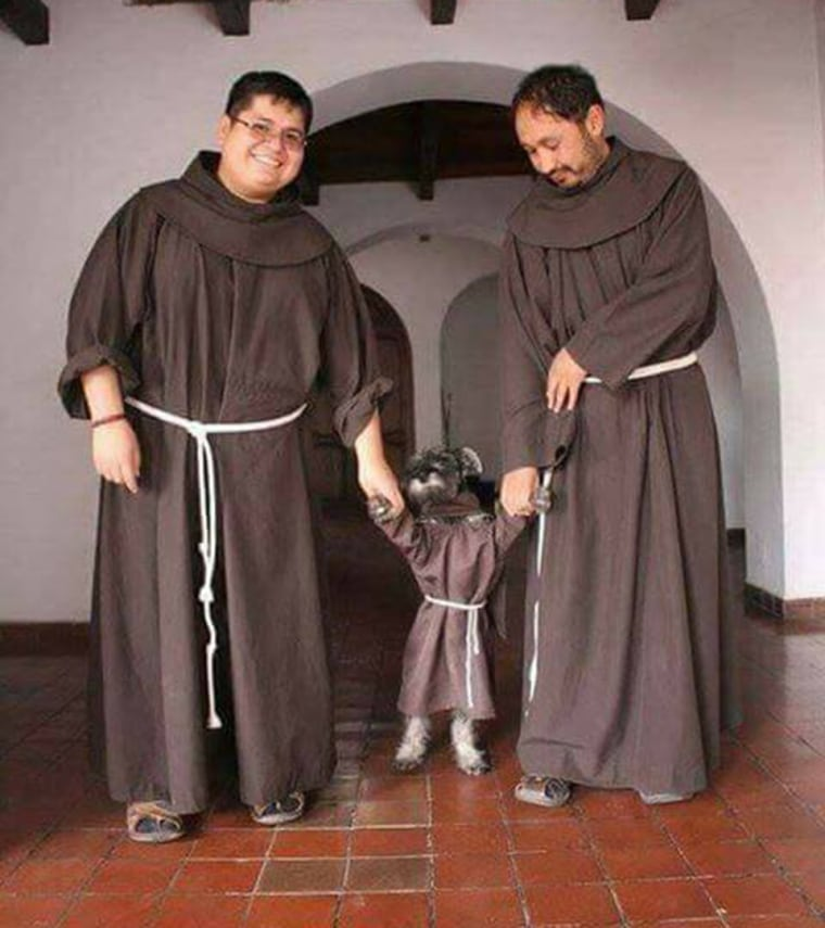 From stray dog to monastery resident