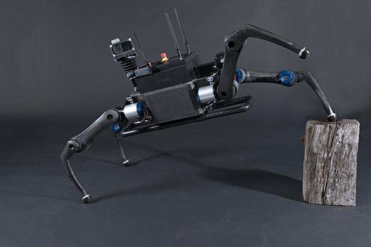 Image: Anymal Robot