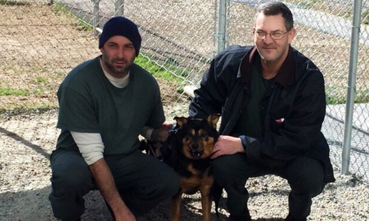 Bandit poses in between his primary and secondary caregivers.