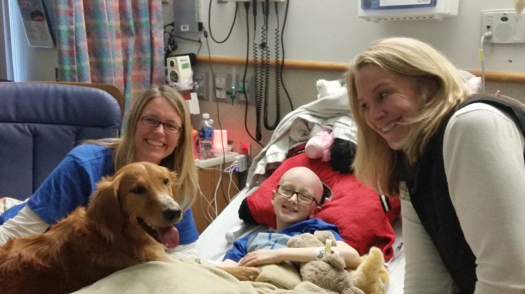 """Brooke was surprised by Trip, the dog who played """"Bailey"""" in the movie, who flew in to meet handler Jennifer Henderson and visit with Brooke and her family and friends after the movie."""