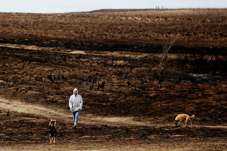 Image: The Wider Image: Deadly U.S. wildfires leave ranches in ruins