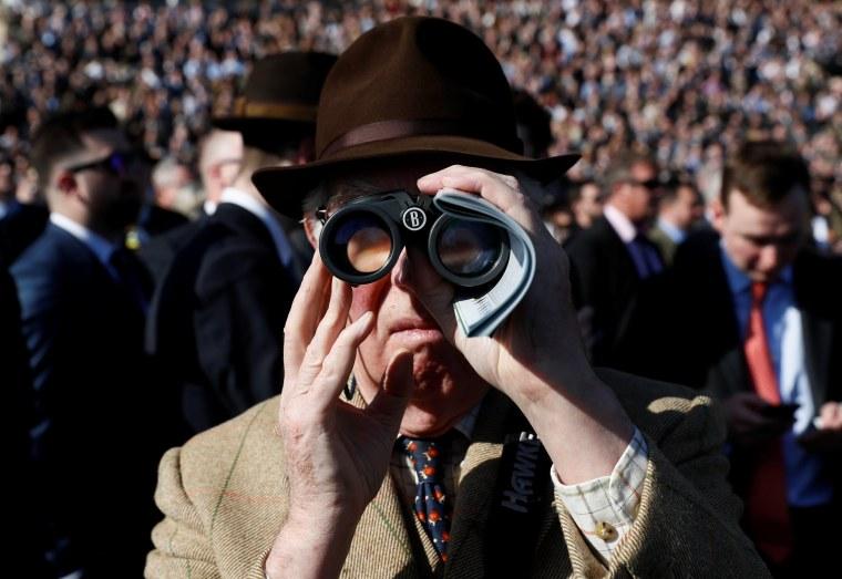 Image: Racegoer watches during the 1.30 Neptune Investment Management Novices' Hurdle at Cheltenham Festival