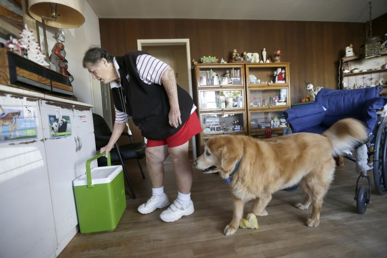 Image: Sherry Scott moves a cooler holding her Meals on Wheels as her 10-year-old golden retriever Tootie looks on at her home in San Diego, Dec. 10, 2013.