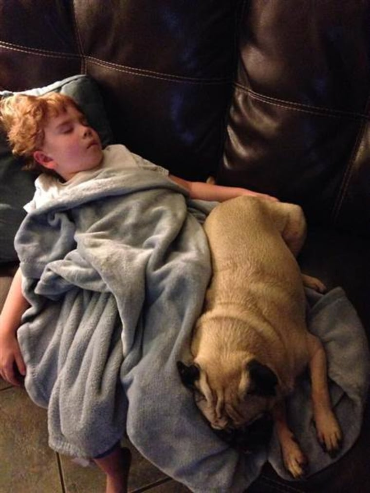 """Samantha Harris' child and dog cuddle as they nap. """"They become a member of the family,"""" Harris said about dog ownership."""
