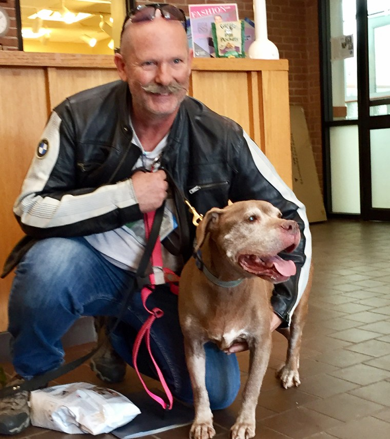 18-year-old Julep the dog found a new home