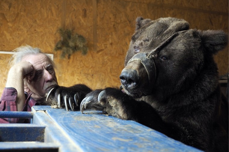 Image: Animal tamer Pavel Kudrya keeps circus bears at his dacha near Volgograd