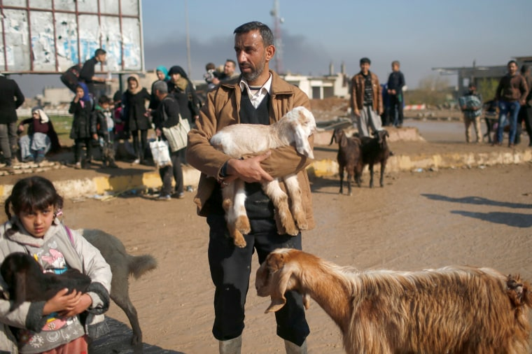 Image: Displaced Iraqis flee their homes in western Mosul, March 24.