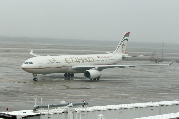 IMAGE: Etihad Airways plane